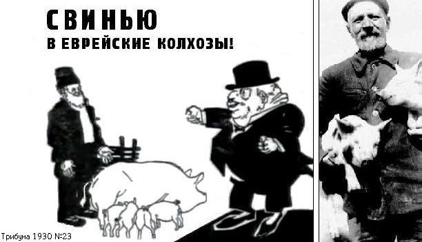 http://evkol.ucoz.com/evkol_files//pig.jpg